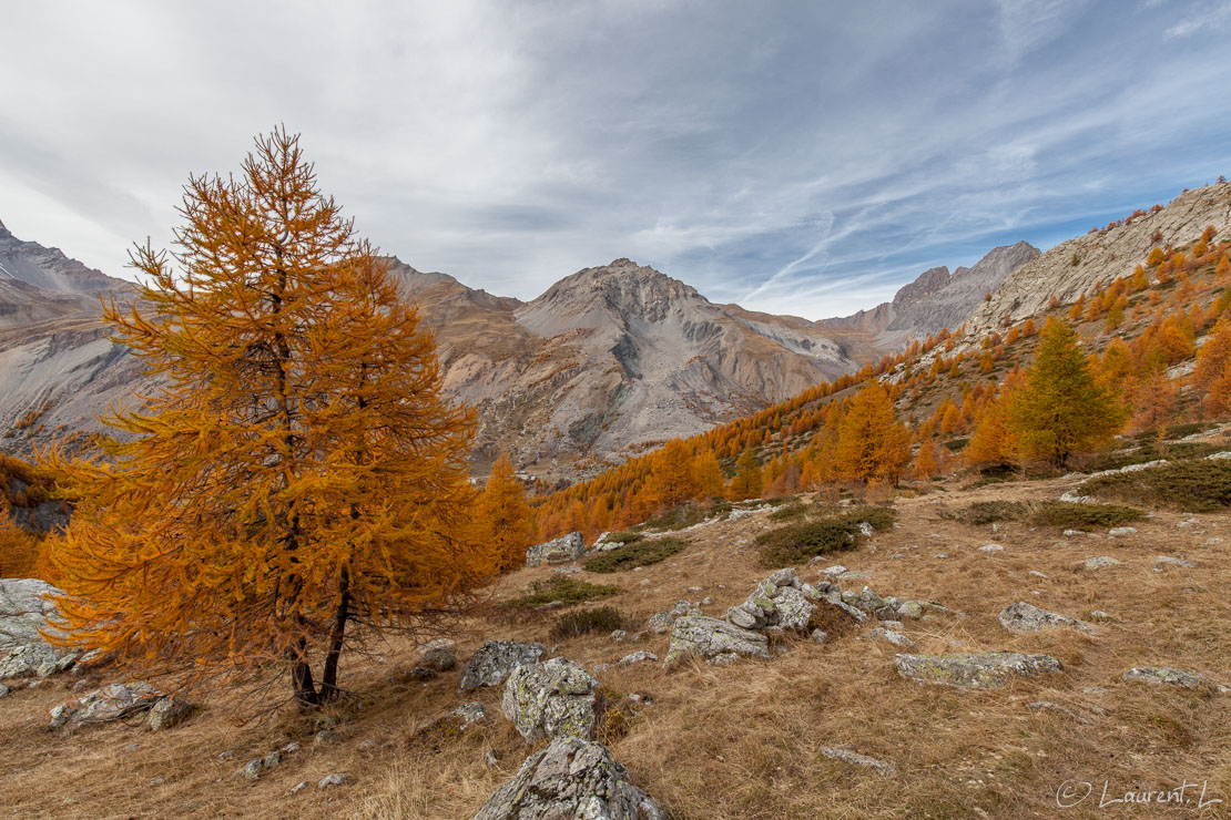 "Vallon de Mary  |  1/80 s à f/9,0 - 100 ISO - 15 mm  |  24/10/2015 - 16:28  |  44°35'9"" N 6°51'42"" E  
