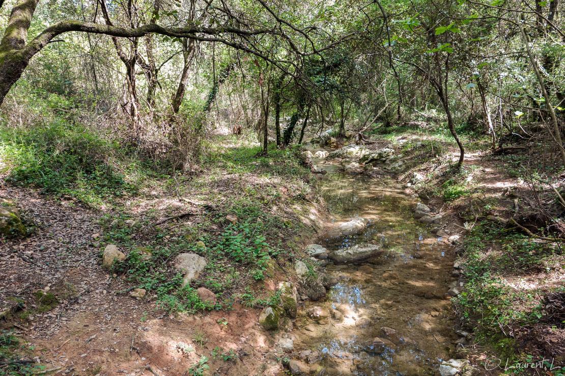 24/04/2014 - 15:00  |  Etape 1 : Antibes ↔ Mouans-Sartoux (18,1 kms)  |  Pour cette première étape, je traverse le parc de la Valmasque parcouru des milliers de fois en course à pied. Là, j'éprouve un sentiment étrange avec mon sac à dos si près de chez moi. Je suis grisé par le challenge qui m'attend pour cette première année : relier Antibes à Montpellier par le GR653A, puis le chemin d'Arles (GR653).