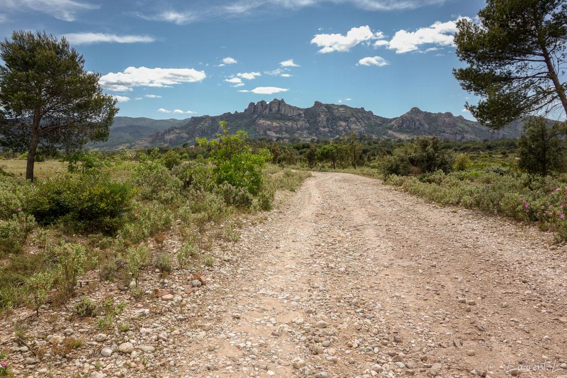 Etape 4 : Fréjus / Bellevue ↔ Le Muy (28,3 kms)  |  27/04/2014 - 14:34  |  Après Fréjus, j'entre dans le coeur de la Provence. Je longe des pistes caillouteuses malaxant mes pieds endoloris. Ici je laisse dans mon dos le célèbre rocher de Roquebrune-sur-Argens. Le temps est toujours aussi agréable.