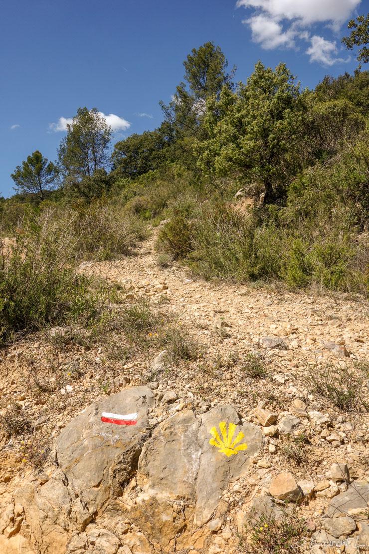 29/04/2014 - 15:16     Etape 6 : Le Thoronet ↔ Le Val (33,4 kms)     Encore plus de 32 kms pour cette sixième étape. Voilà des traces du Chemin que je croiserai durant tout mon périple (parfois pas assez d'ailleurs, car il m'arrive de m'égarer...) :  les marques blanches et rouges du GR et la marque du chemin de Compostelle ici joliment représentée (plus souvent, j'ai droit à un autocollant aux dimensions d'un timbre-poste...).