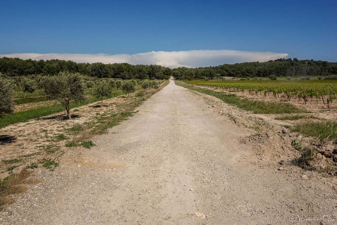 03/05/2014 - 16:21  |  Etape 10 : Aix-en-Provence / Jas-de-Bouffan ↔ Salon-de-Provence / Les Viougues (37,1 kms)  |  Cette étape sera la plus longue de cette année. Le Mistral se déchaîne l'après-midi. Les rafales soufflent à plus de 100 km/h et je les prends de face toute la journée. Le vrombissement continu du vent me fait tourner la tête. Me voilà contraint de mettre des boules Quiès ! J'engage physiquement pour avancer contre le vent. Ici nous sommes sur l'authentique voie romaine Aurelia à 10 kms de Salon. Au loin vers l'est  en me retournant j'aperçois un énorme cumulo-nimbus (nuage d'orage) sur le Var, là où j'étais il y a quelques jours...