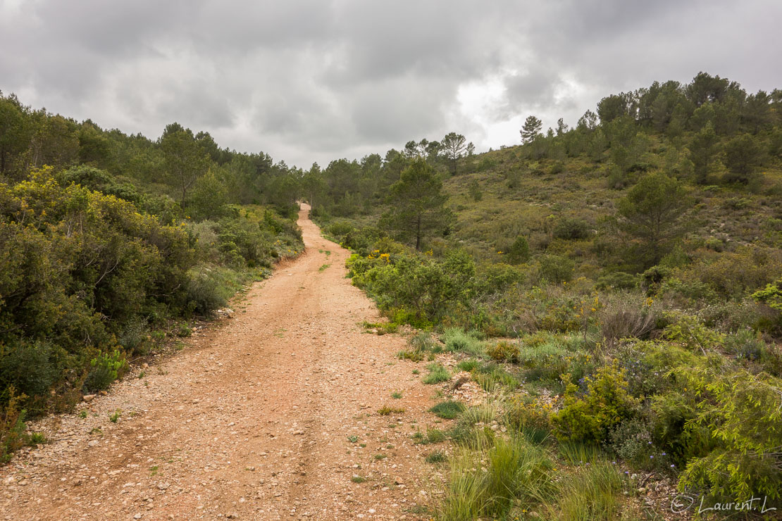 Etape 17 : Grabels - Montarnaud est (12,8 kms)  |  25/04/2015 - 14:46  |  Je reprends en cette année 2015 le Chemin d'Arles en débutant par une demie-étape. Je suis ému malgré un temps pluvieux car je sais que je vais traverser de belles régions d'une part, que je croiserai plus de pèlerins que l'année précédente d'autre part. De plus, j'ai pris trois semaines pleines de congés pour poursuivre mon périple vers le sud-ouest. L'aventure quoi ! A peine parti de chez mes amis, je double au milieu de nulle part deux pèlerins partis d'Arles. Cette année, je ne vivrai pas une traversée déserte comme en Provence, c'est sûr.